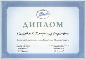 Дипломы / Сертификаты